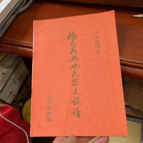 1994年梅邑吴兴姚氏宗支族谱