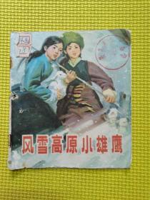 风雪高原小雄鹰(40开)