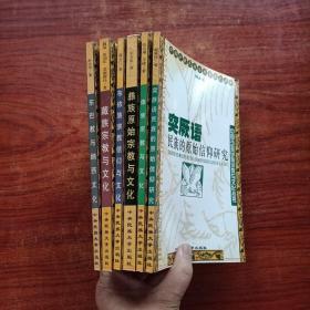 中国少数民族宗教与文化丛书《 东巴教与纳西文化 、藏族宗教与文化、 布依族宗教信仰与文化、彝族原始宗教与文化、傣族宗教与文化、突厥语民族的原始信仰研究》6本合售