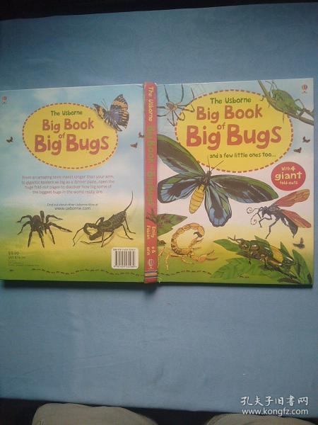 BigBookOfBigBugs