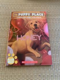ThePuppyPlace#16:Honey小狗之家16:甜心