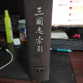 三国志索引(书皮有伤,有锯印不影响使用,看图。)
