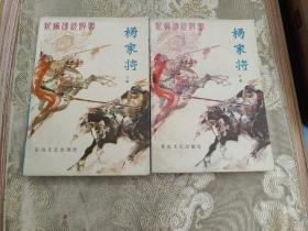 新编传统评书:杨家将(上下全二册 挺版好品!)