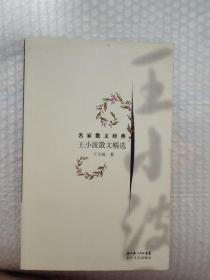 王小波散文精選(見圖)