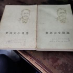 契诃夫小说选〈上下〉