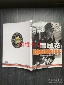 雪绒花:二战德国山地兵战史1939-1945.陆军篇