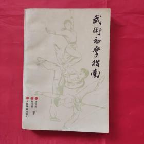 武术初学指南(正版实用武术书籍)