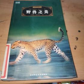 野兽之美 世界经典文化故事 (全彩珍藏本)