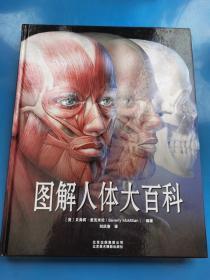 图解人体大百科