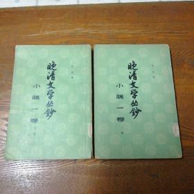 晚清文学丛钞 小说一卷  上下册