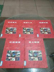 红色经典连环画库:壮志凌云、战旗如画、英雄儿女、红流滚滚、星火燎原(5册合售)