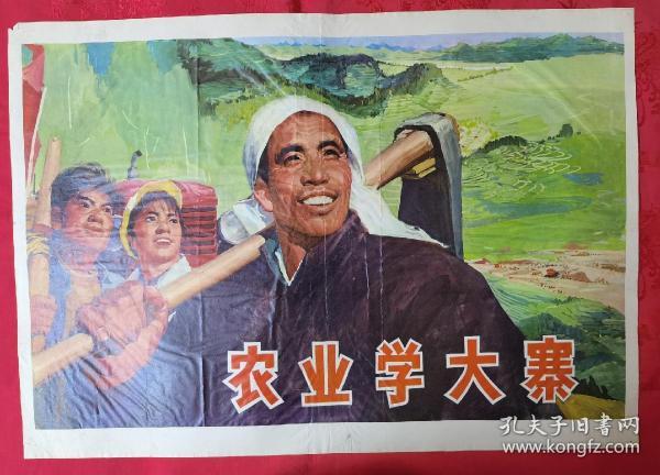 宣传画2开农业学大寨