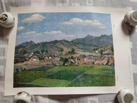 宁冈(油画)1977