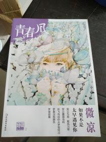 疯狂阅读 青春风特辑2 微凉(年刊)(2018版)