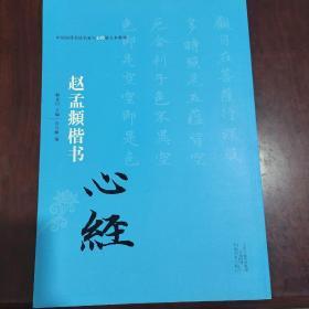 中国历代书法名家写心经放大本系列 赵孟頫楷书《心经》