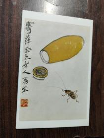 【明信片】野味盎然(27)