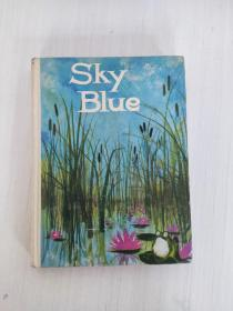 Sky Blue by Paul A. Witty & Mildred Hoyt Bebell 英文原版精装 彩色插图 1965年