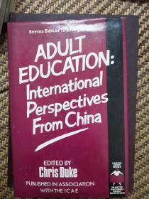 Adult education: International perspectives from China 精装译<中国成人教育的国际视野