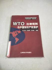 WTO法律规则与中国知识产权保护