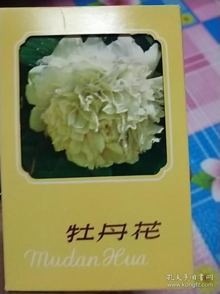 五十年代明信片:牡丹花