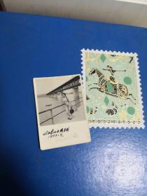 武汉长江大桥留影1959.9(美女)  笔记本邮夹内