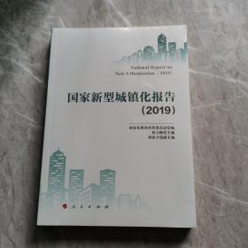 国家新型城镇化报告(2019)