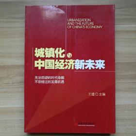 城镇化与中国经济新未来
