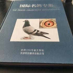 国际名鸽专集