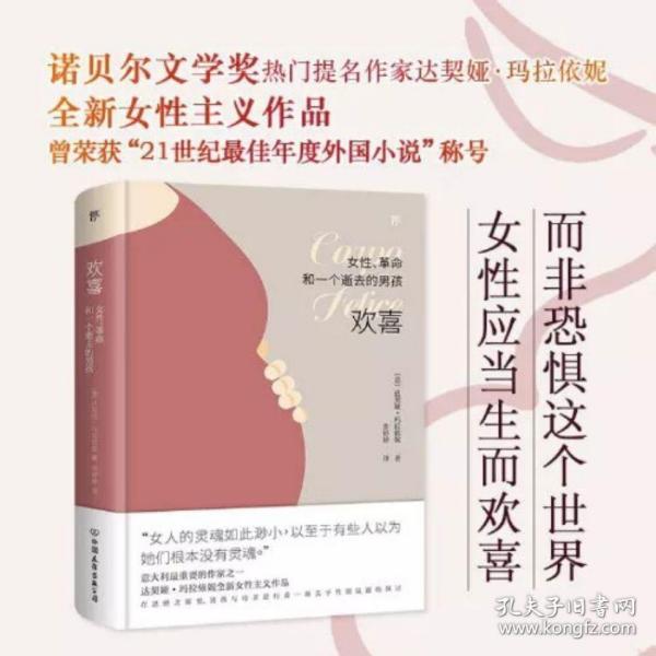 欢喜:女性、革命和一个逝去的男孩(诺贝尔文学奖热门提名作家女性主义作品)