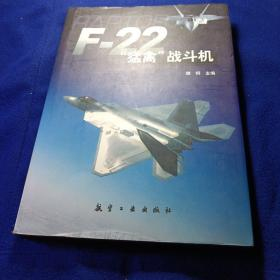 """F-22""""猛禽""""战斗机"""