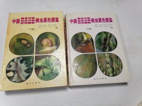 中国粮食作物经济作物药用植物病虫原色图鉴(上下)