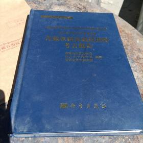 青藏铁路西藏段田野考古报告