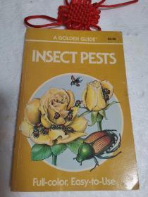 英文彩图原版:INSECTPESTS(害虫)