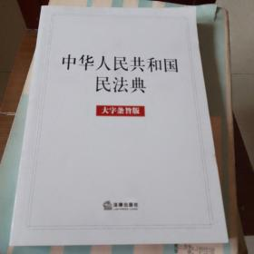 中华人民共和国民法典(大字条旨版)2020年6月