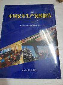 中国安全生产发展报告