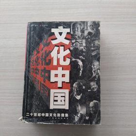一版一印:《文化中国:二十世纪中国文化影像集》