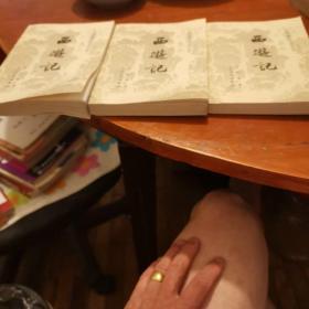 西逰记(上中下)中国古典文学读本丛书