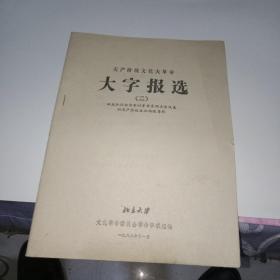 无产阶级文化大革命 大字报选2