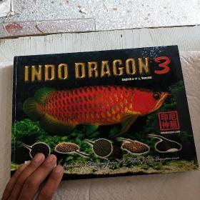 印尼神龙 3:INDO DRAGON  (画册)