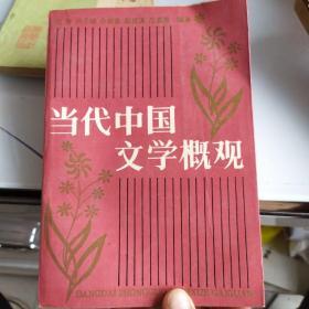 当代中国文学概观  有字和标线