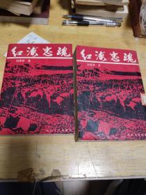 红海忠魂(上,下)两册