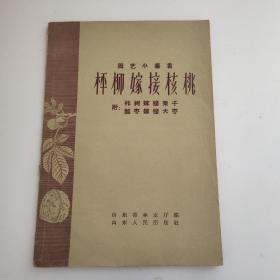 园艺小丛书:枰柳嫁接核桃