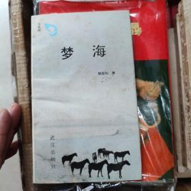 梦海(七色雨)