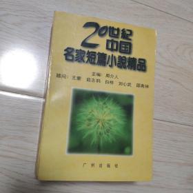 中国当代实力派作家大系 王蒙小说精选