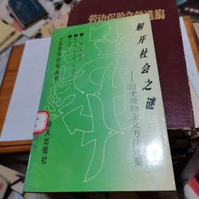 少年哲学向导丛书:解开社会之谜