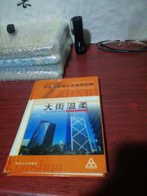 中国最新流行小说排行榜(大街温柔 下)