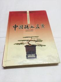 中國揚派盆景  【一版一印   內頁品相好】