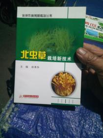 北虫草栽培新技术