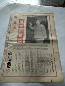 哈尔滨战报1967年12月12日