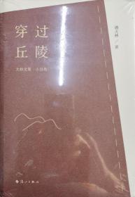 越过丘陵 大林文集·小说卷